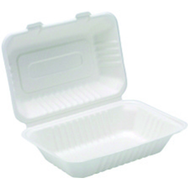 Bagasse Lunch Box